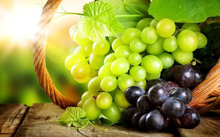 podkormka-vinograda